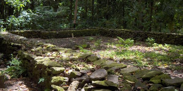 Moorea Ruins