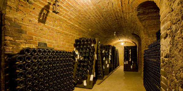 Champagne Winery in Epernay