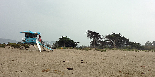 Carpinteria State Beach (Michelle Erickson)