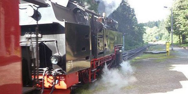 Harz Narrow Gauge Railway (Godfrey Hall)