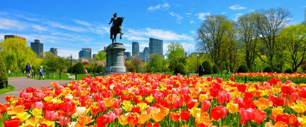 Cleveland Boston