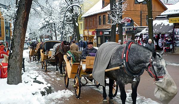 Horse Drawn Carriages on Zakopane's Main Street (Godfrey Hall)