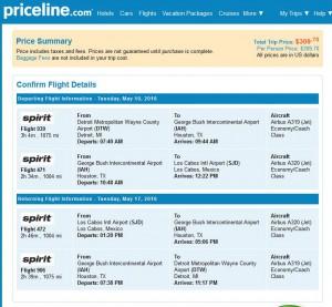 Detroit-Los Cabos: Priceline Booking Page