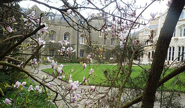 Peterhouse College (Godfrey Hall)