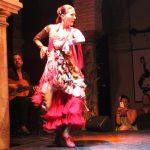 Museo del Baile Flamenco (Sasha Arms)