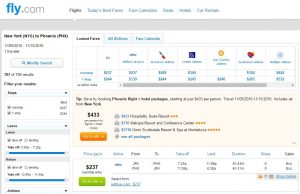 Phoenix to New York City: Fly.com Results