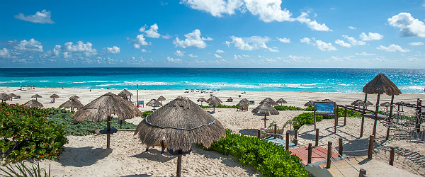 Dolphin Beach, Cancun Featured (Shutterstock.com)